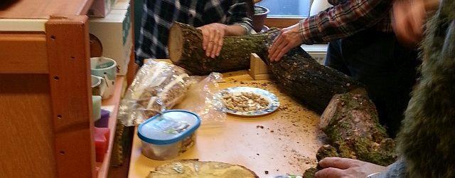 """Workshop """"Eetbare paddenstoelen uit eigen tuin"""" VOL"""