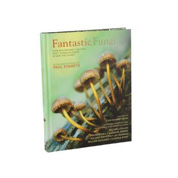 boek fantastic funghi